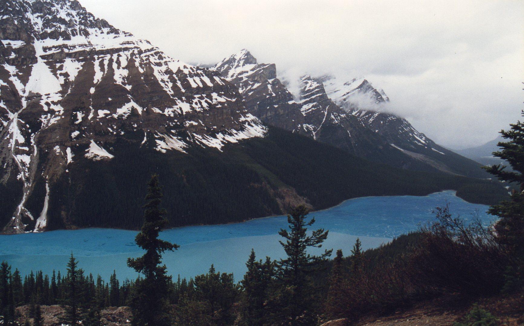 Peyto Lake, mas poderia se chamar Wow!, pois é o que todos pensam ou dizem quando o veem!