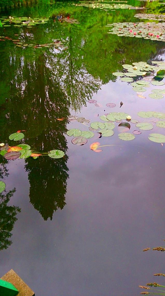 onde ver Monet