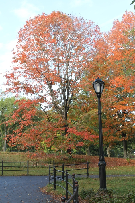 Central Park, próximo à Bethesda Fountain, em 14 de outubro