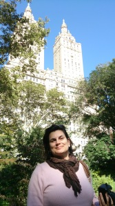 Twin Towers, vistas do Central Park