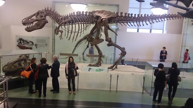 Museu Historia Natural Nova Iorque