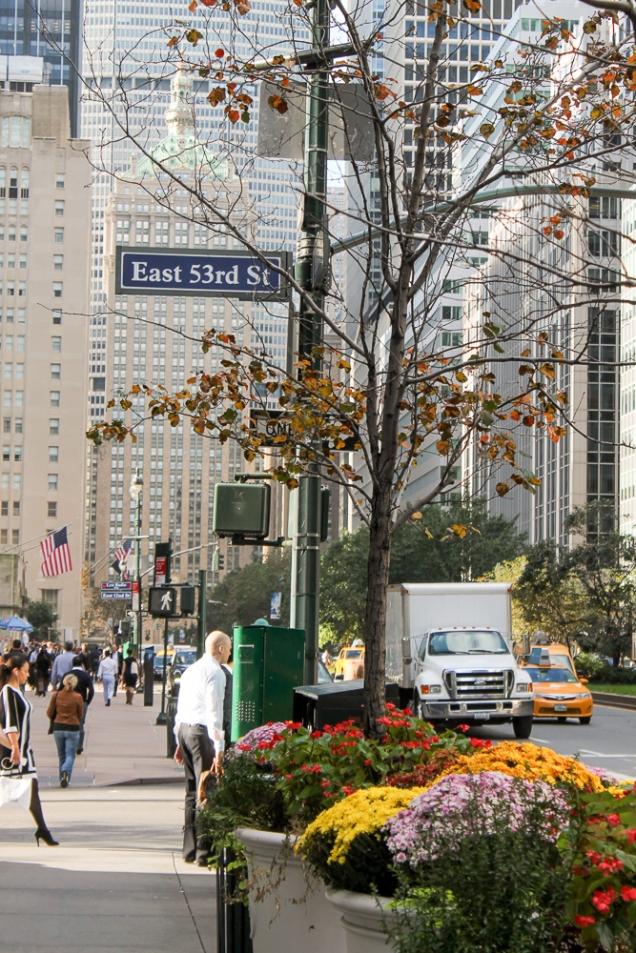 Manhattan dicas
