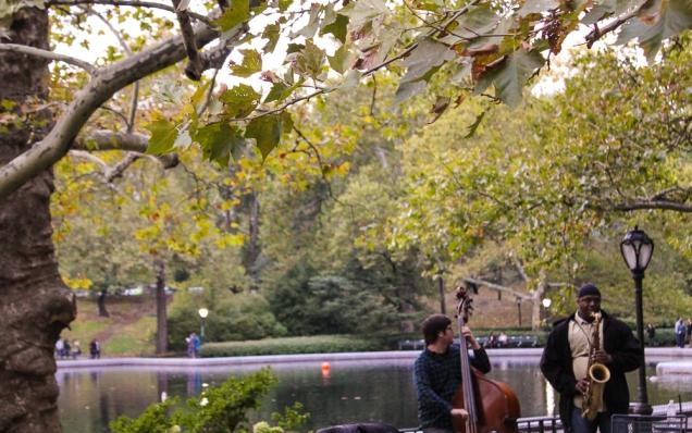 Central Park onde comer