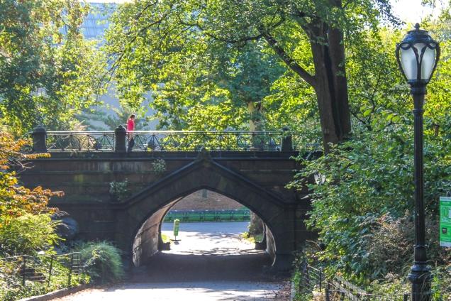 central park pontes nova iorque