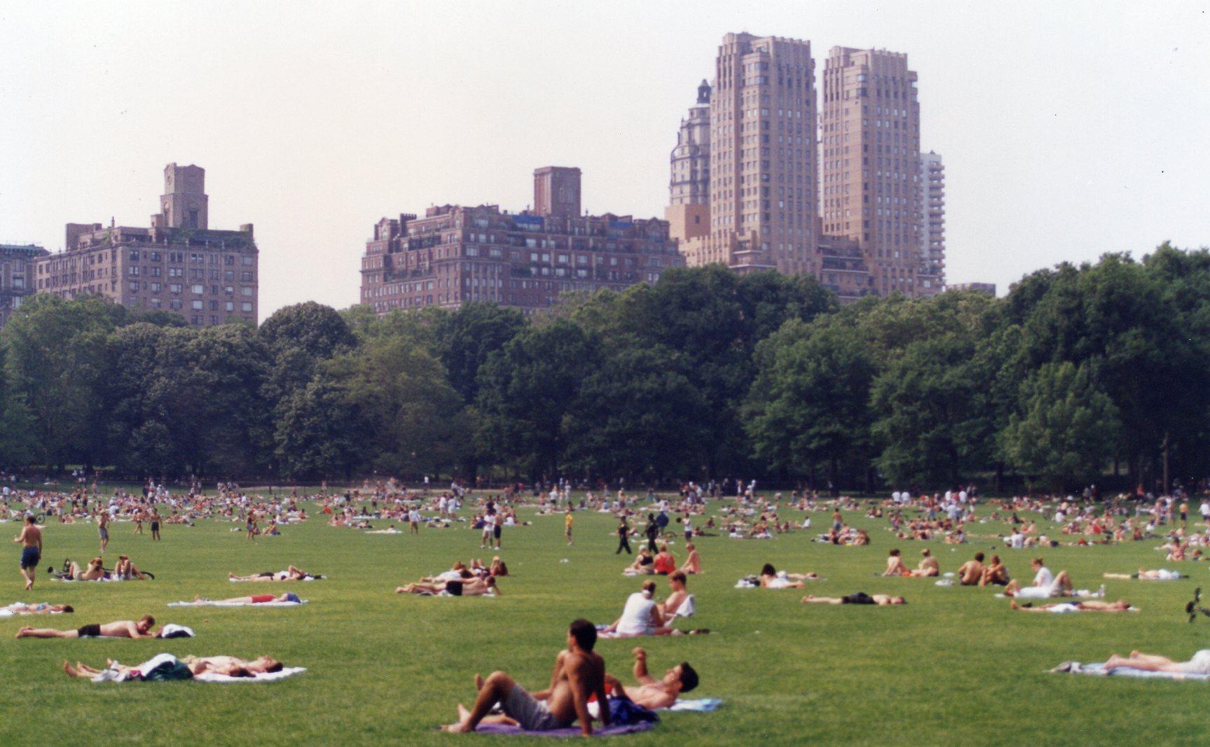 Nova Iorque Central Park gramado