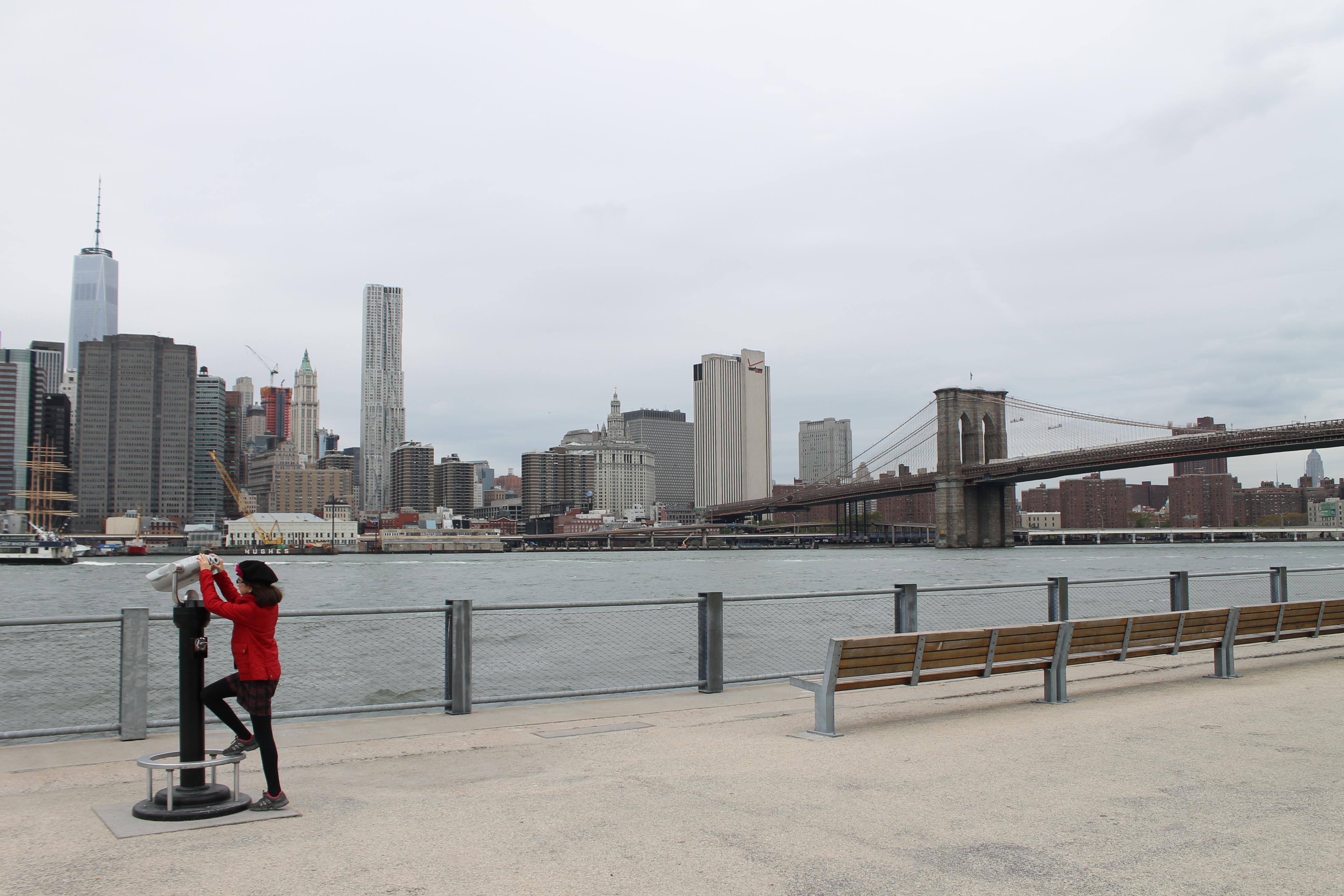 brooklyn bridge Nova York skyline