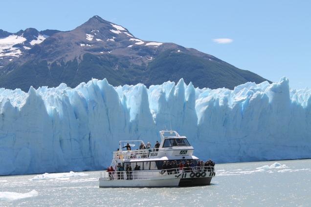 El calafate Perito Moreno