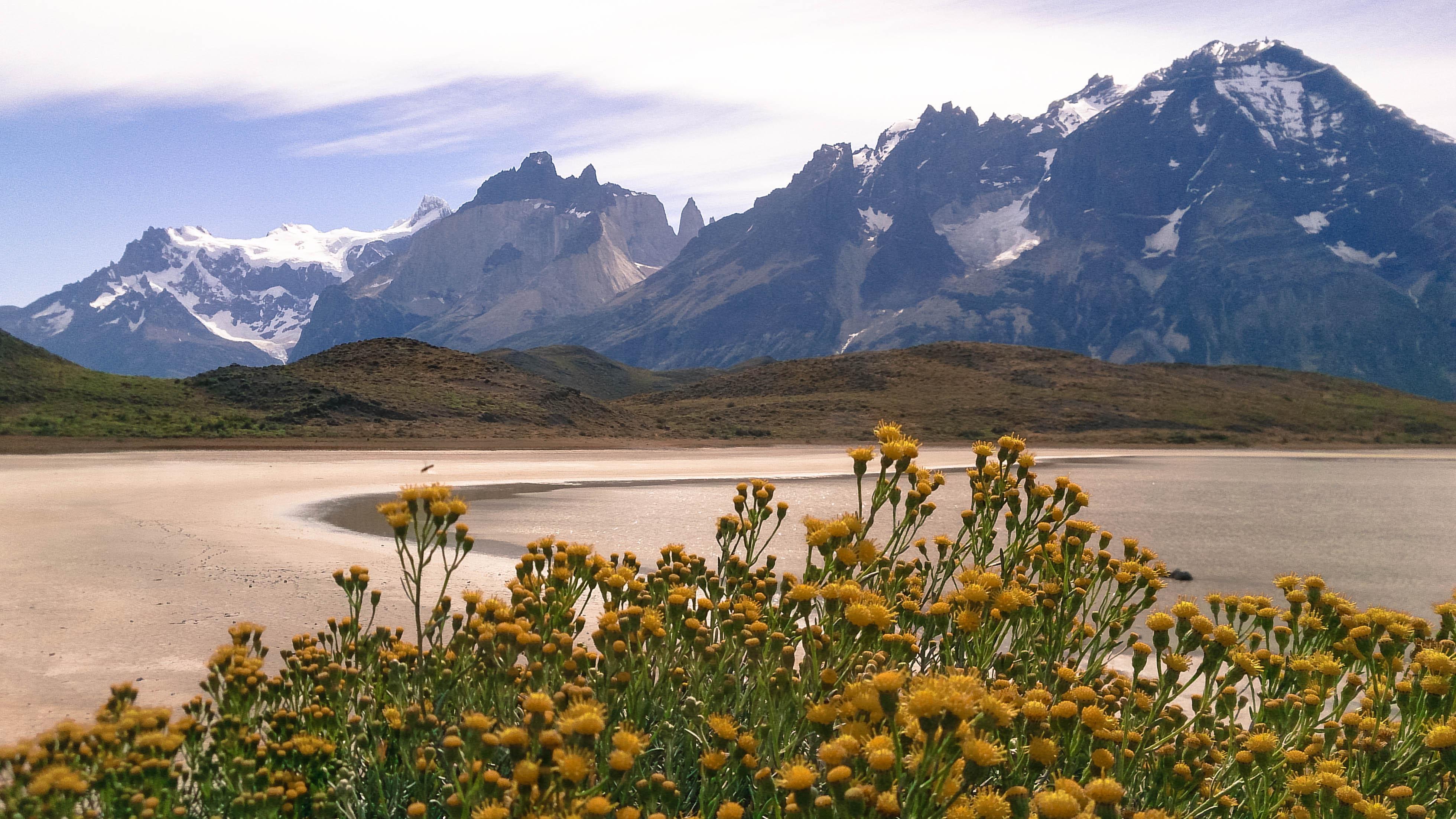 Torres del Paine dicas