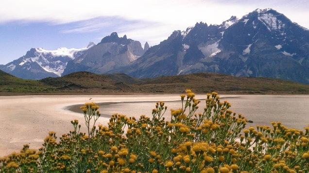 flores lago montanha-2358