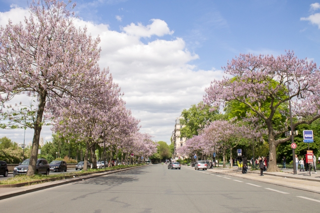 Que coisa mais linda a Quay Branly, a avenida que margeia o Sena aos pés da Torre