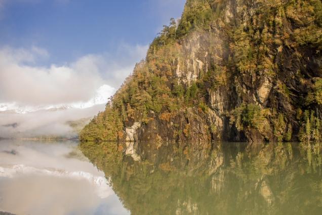 Isla Victoria e Bosque Arrayanes