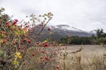 Cerro Tronador passeio