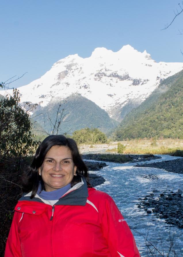 O Cerro Tronador, no meio do Cruce Andino