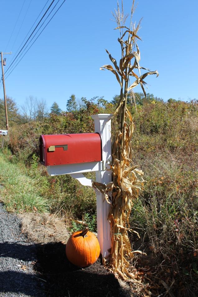Nova Iorque caixa correio outono halloween