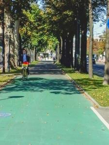 A ciclovia de Viena é pintada apenas onde há maior movimento de pedestres. E de verde. Suspiro.