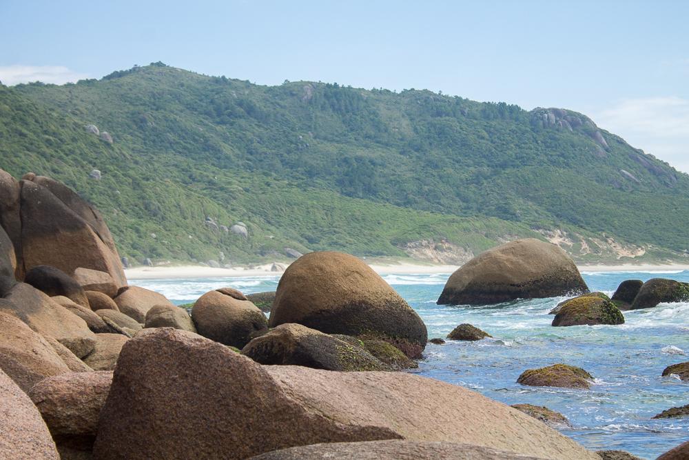praia nudismo Florianopolis