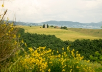 Vale d'Orcia Toscana
