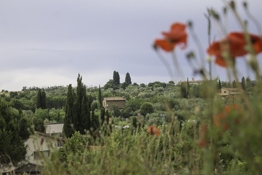 Toscana quando ir