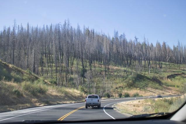 Yosemite melhroes estradas e entradas