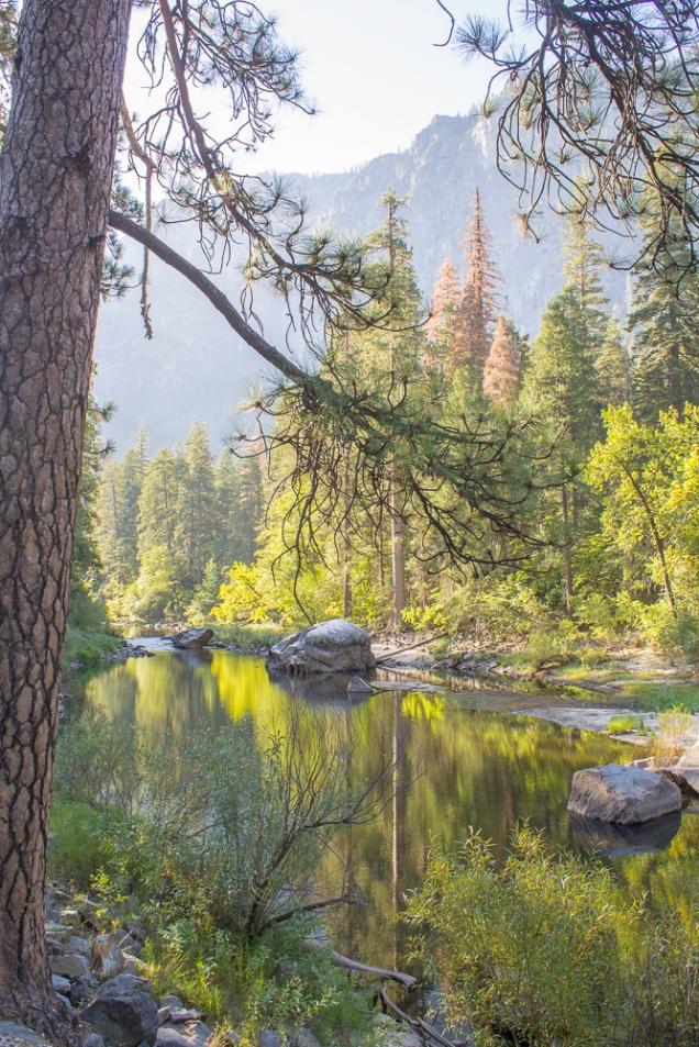 Enquanto lagos como o Mirror secam no verão, o rio Merced fica tão calmo que mais parece um lago