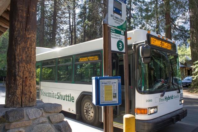 transporte gratuito no parque