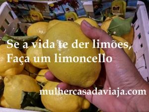 limoes-limoncello