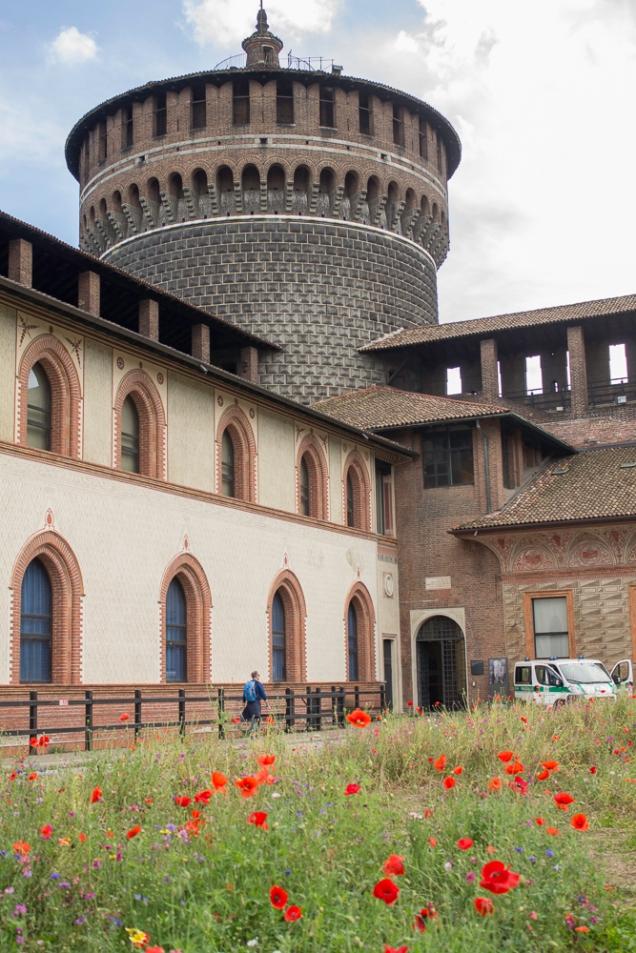 patio do Castello Sforzesco e as papoulas vermelhas