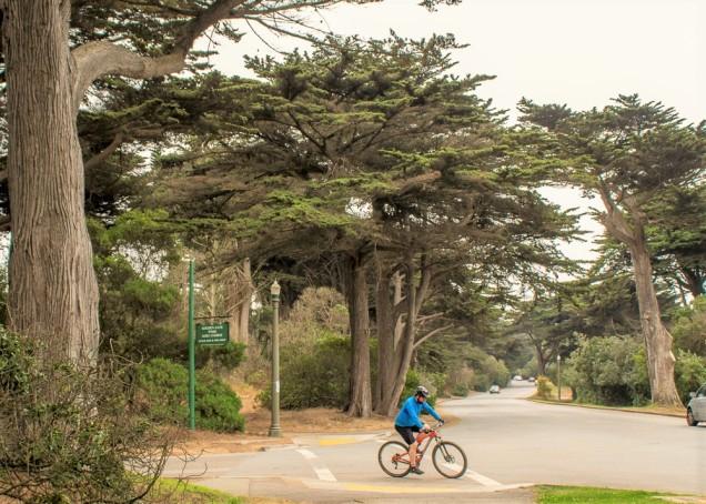 A bike é sua melhor amiga, porque o parque é muito grande!