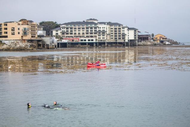Mergulhadores em San Carlos Beach