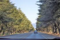 Estrada perto de Solvang