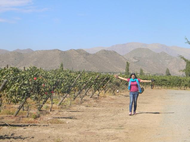 Santiago-bate-volta a vinícola