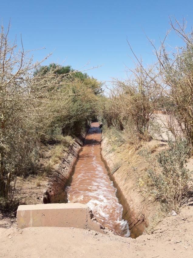 água no deserto do Atacama