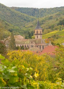 Ribeauville Alsace what to do