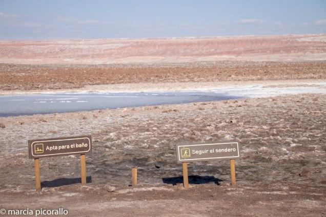 Atacama lagoas sal