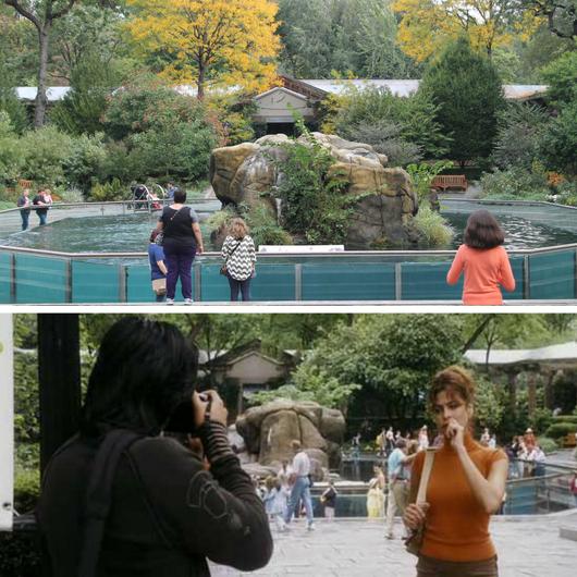 filmes no Central Park Nova Iorque