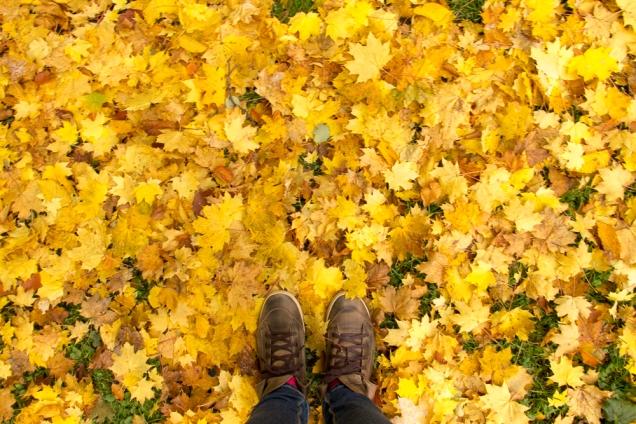 GaPa sul Alemanha outono