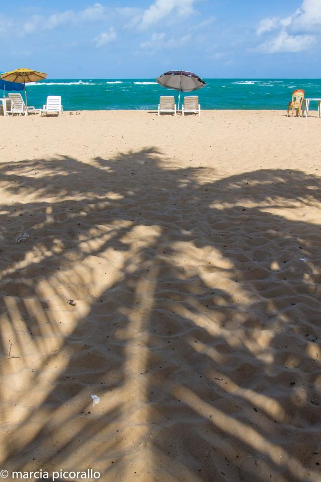 Praia Gunga Alagoas Maceio
