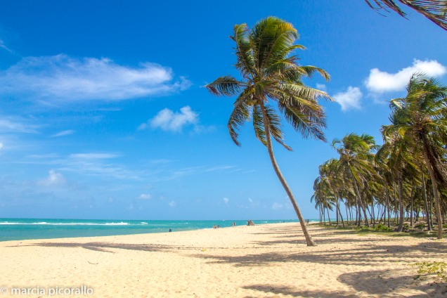 melhores praias Alagoas