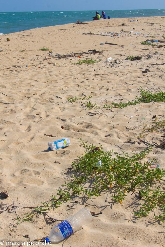 Praia Gunga alagoas