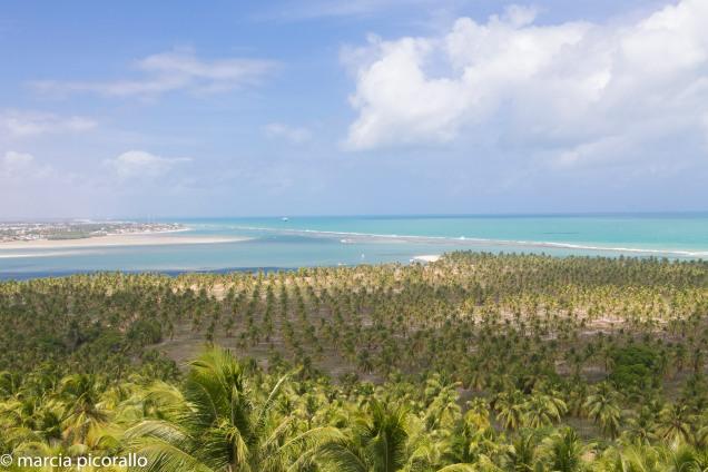 Praia Gunga vista mirante