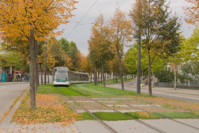 Estrasburgo- tram