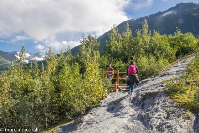 Alasca exit glacier