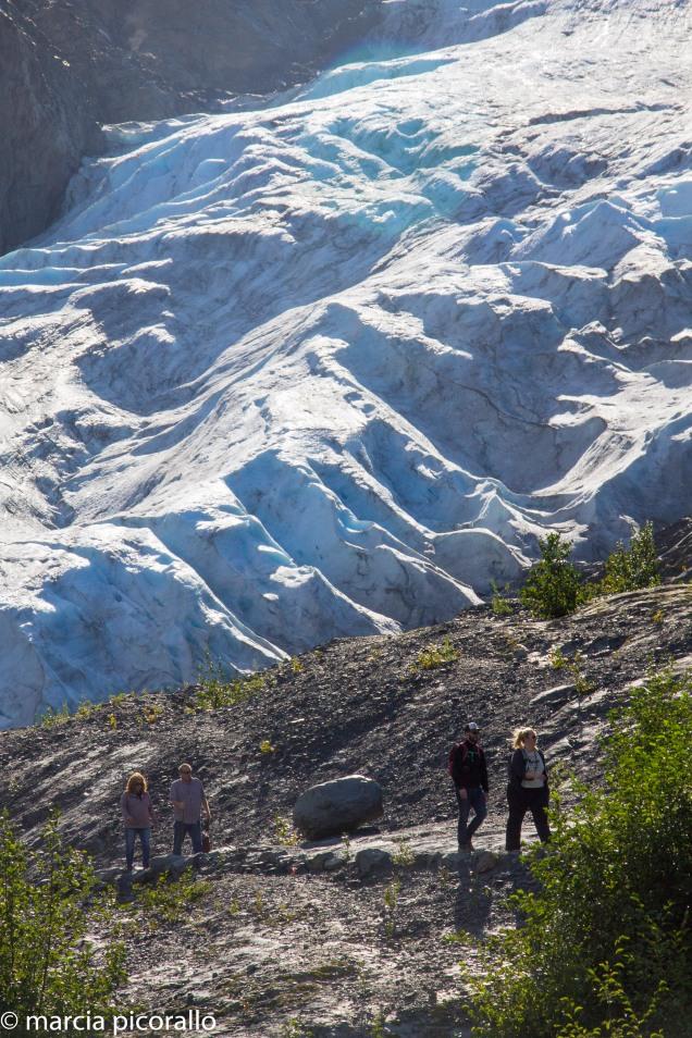 Alasca Seward exit glacier