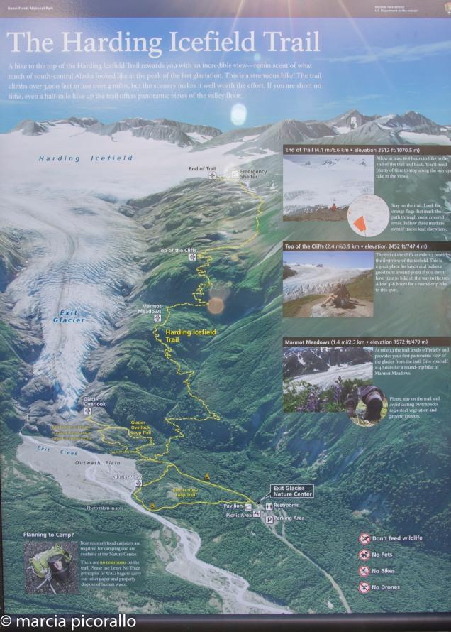 Alasca Exit geleira trilha