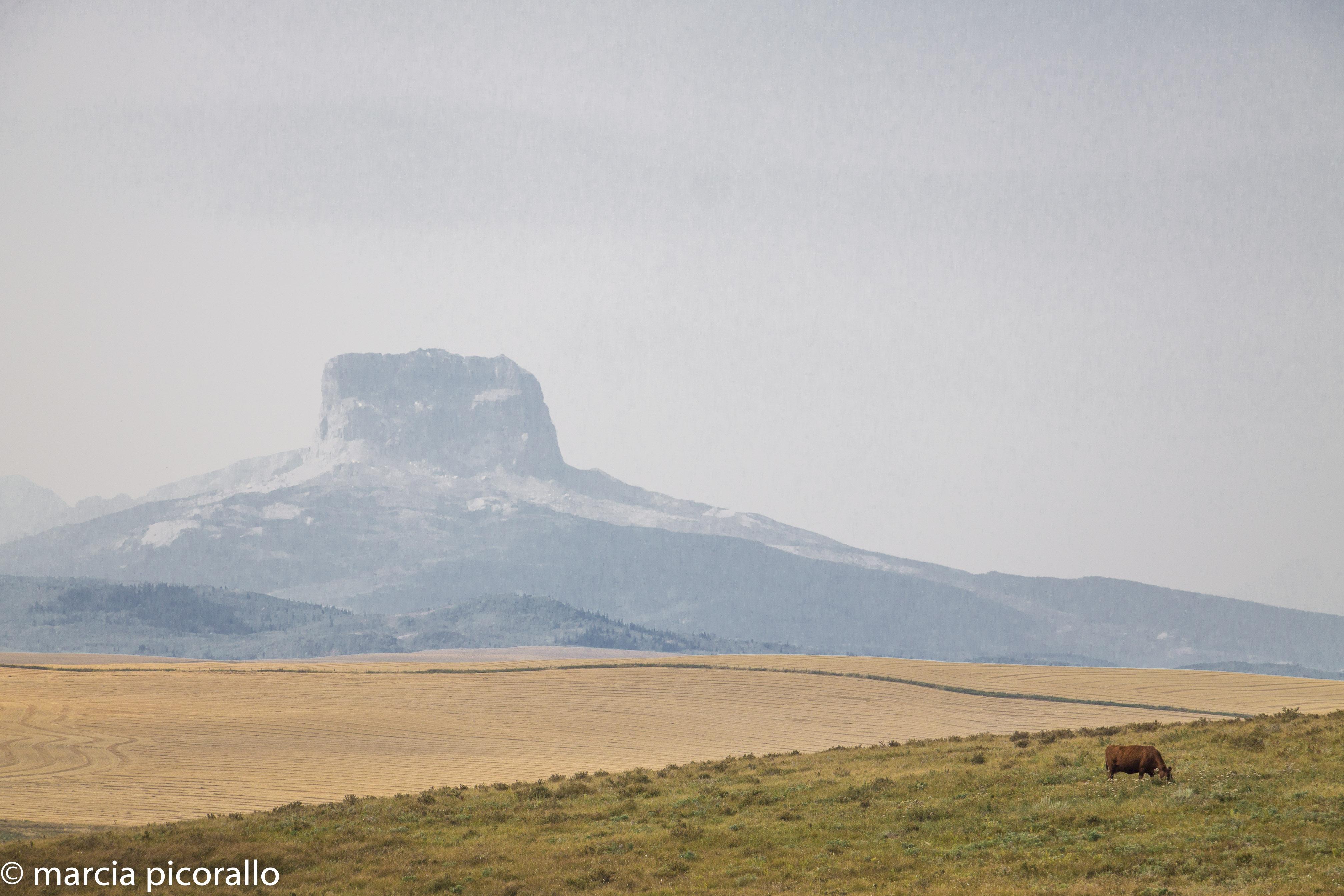 montanhas rochosas estados unidos Montana