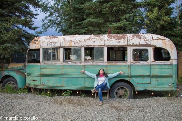 Denali Alasca natureza selvagem